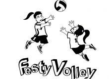 Inscrivez-vous à Festy Volley !